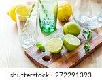 fresh juicy limes  mint leaves... | Shutterstock . vector #272291393