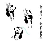 panda on the tree  panda with a ... | Shutterstock .eps vector #272302304