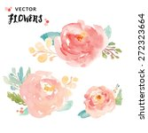 vector watercolor flowers.... | Shutterstock .eps vector #272323664