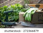 gardening tools  | Shutterstock . vector #272366879