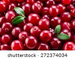 Cranberry With Leaves Macro....
