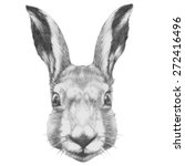 Stock photo original drawing of rabbit isolated on white background 272416496