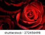 Stock photo roses background 272456498