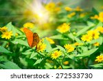 Orange Butterfly On A Yellows...