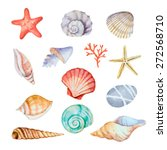 Watercolor Set Of Seashells On...
