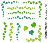 Set Of Ivy Branch   Vector...