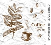 hand drawn vintage coffee plant.... | Shutterstock .eps vector #272768810