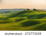 spring in the fields of tuscany ... | Shutterstock . vector #272772539