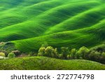 Pastoral Green Field With Long...
