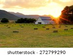 Agricultural Landscape With A...