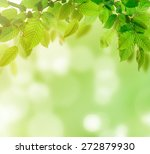 green nature background  lots... | Shutterstock . vector #272879930