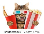 cat watching a movie | Shutterstock . vector #272947748