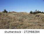 scenic view of grassy field in... | Shutterstock . vector #272988284