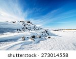 snow desert winter landscape in ...