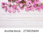 bright pink   flowers on white  ... | Shutterstock . vector #273025604