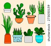 cactus and succulents set. hand ... | Shutterstock .eps vector #273050159