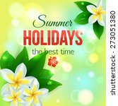 summer shining typographical... | Shutterstock .eps vector #273051380
