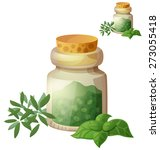 Dried Herbs. Detailed Vector...