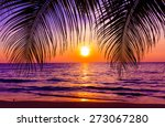 beautiful sunset.  sunset over... | Shutterstock . vector #273067280