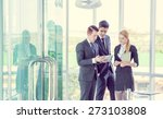 business partners discussing... | Shutterstock . vector #273103808