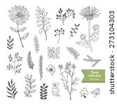 hand drawn plants and floral...   Shutterstock .eps vector #273104303