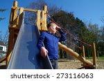 preteen boy expressive... | Shutterstock . vector #273116063