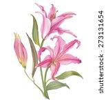 watercolor lily flower | Shutterstock . vector #273131654