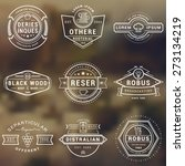 set of hipster vintage labels ... | Shutterstock .eps vector #273134219