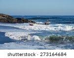 curanipe  chile   april 22 ... | Shutterstock . vector #273164684