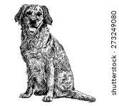 image of yellow labrador...   Shutterstock .eps vector #273249080