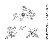 sketches of spring flowers.... | Shutterstock .eps vector #273286076