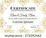 certificate design template... | Shutterstock .eps vector #273292463