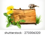 Wooden banner, dandelion and green grass, vector illustration
