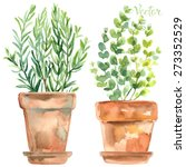 herbs in a flowerpot. oregano... | Shutterstock .eps vector #273352529