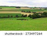 hilly countryside  | Shutterstock . vector #273497264