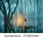 woman with lantern floating on... | Shutterstock . vector #273501464