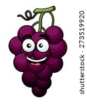 branch of purple grape fruit in ... | Shutterstock . vector #273519920