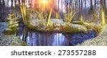 spring rare flowers   beautiful ... | Shutterstock . vector #273557288