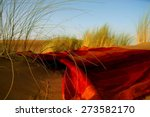 Moroccan Desert Scenery With...