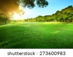 beautiful morning sun light...   Shutterstock . vector #273600983