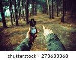 pov image of traveler woman...   Shutterstock . vector #273633368
