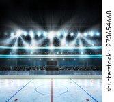Hockey Stadium With Spectators...