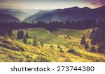 beautiful summer landscape in... | Shutterstock . vector #273744380