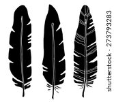 hand drawn bird feathers  black ... | Shutterstock .eps vector #273793283