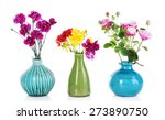 different beautiful flowers in...   Shutterstock . vector #273890750