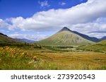 highlands in spring  scotland ...   Shutterstock . vector #273920543
