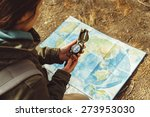 traveler young woman searching... | Shutterstock . vector #273953030