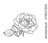 rose sketch. black outline on... | Shutterstock .eps vector #274017203