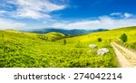 composite image of panoramic mountain landscape.  winding road on hillside meadow, few stones and trees along the road. conifer forest far away on mountains in morning light - stock photo