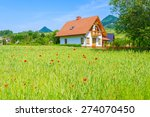 House On Green Field With Poppy ...